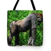 Gorilla Posing Tote Bag