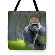 Gorilla Stare Tote Bag