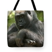 Gorilla1 Tote Bag