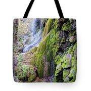 Gorman Falls At Colorado State Park II - San Saba Texas Hill Country Tote Bag