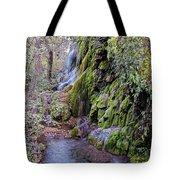 Gorman Falls At Colorado State Park - San Saba Texas Hill Country Tote Bag