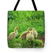 Gosling Shore Side Tote Bag