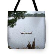 Goslings And Geese Tote Bag