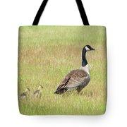 Goslings Following Mama Tote Bag