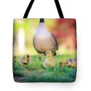 Goslings In The Park Tote Bag