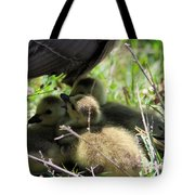 Gosling's In The Shade Tote Bag