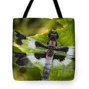 Gossamer Wings Tote Bag