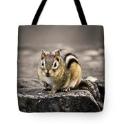 Got Nuts Tote Bag