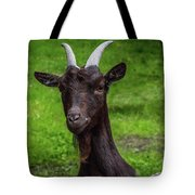 Got Something For Me? Tote Bag