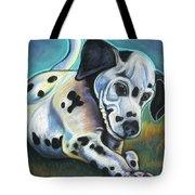 Gotballs4pets? Dalmatian Tote Bag