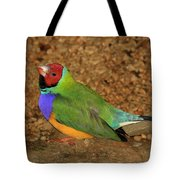 Gouldian Finch Tote Bag