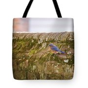 Governor's Palace Bluebird Tote Bag