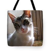 Gowrie The Cat Tote Bag