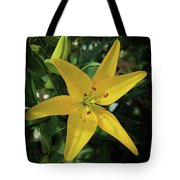 Grace Flowers Daylily Art Tote Bag