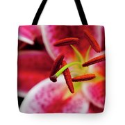 Graceful Lily Series 21 Tote Bag