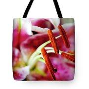 Graceful Lily Series 23 Tote Bag