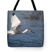 Graceful Spirit By Darrell Hutto Tote Bag