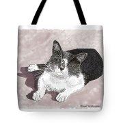 Gracie Jacks Cat Now Tote Bag