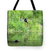 Grackle Meets Beaver Tote Bag