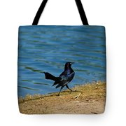Grackle On The Move Tote Bag