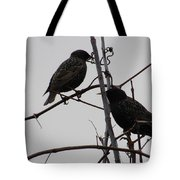 Grackles On Branches  Tote Bag