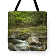 Grafton Notch Maine Tote Bag