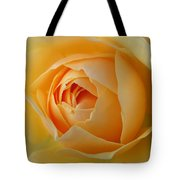 Graham Thomas Old Fashioned Rose Tote Bag by Jocelyn Friis