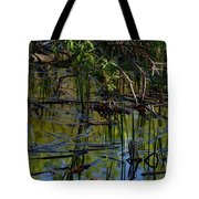 Grand Beach Marsh Tote Bag