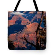 Grand Canyon 30 Tote Bag