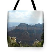Grand Canyon 8 Tote Bag