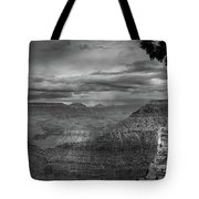 Grand Canyon Bw Tote Bag