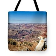 Grand Canyon Girl And Dog Tote Bag