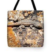 Grand Canyon Lizard Tote Bag
