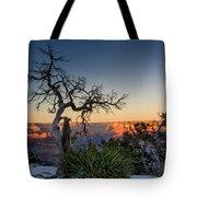 Grand Canyon Lone Tree At Sunset Tote Bag