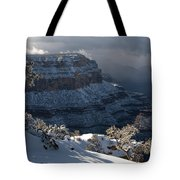 Grand Canyon Storm Tote Bag