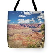 Grand Canyon Vista 14 Tote Bag
