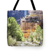 Grand Canyon16 Tote Bag