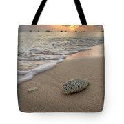 Grand Cayman Beach Coral At Sunset Tote Bag
