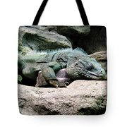 Grand Cayman Blue Iguana Tote Bag