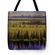 Grand Mountain Reflections Tote Bag