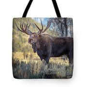 Grand Teton Moose Tote Bag