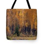 Grand Tetons Fall Tote Bag