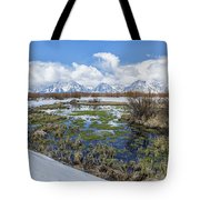 Grand Tetons From Willow Flats In Early April Tote Bag