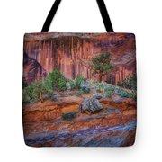 Grand Wash - Capitol Reef Tote Bag