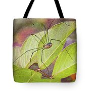 Grandaddy Long Legs Tote Bag