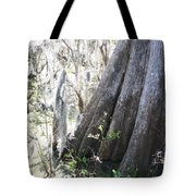 Grandfather Cypress Tote Bag