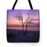 Grandview Beach Sunrise Tote Bag