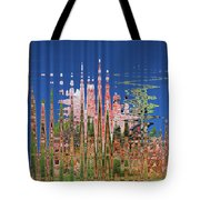 Granite And Sagurao Abstract Tote Bag