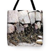 Granite And Seaweed Tote Bag