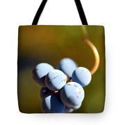 Grape Tote Bag by Catherine Lau